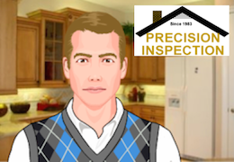 about precision inspection